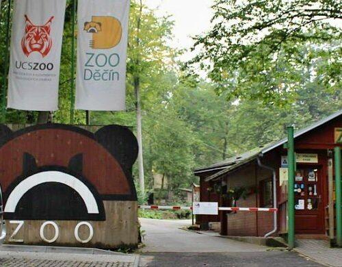 penzion-via-ferrata-zoo-decin-10